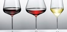 Vin Saint Estephe : un monde riche à découvrir