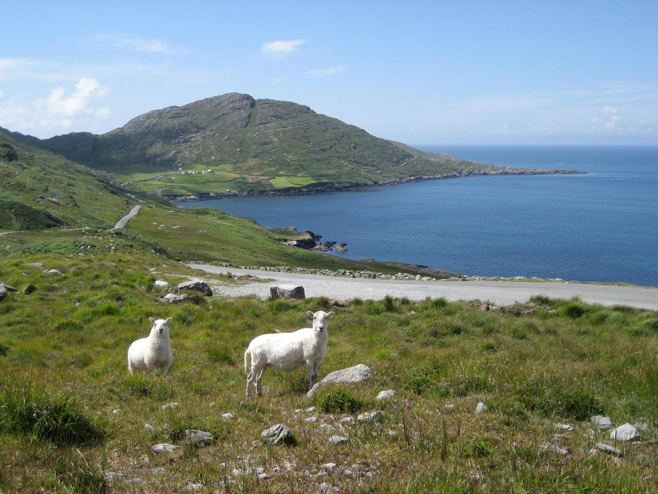 Sejours linguistique: une virée en Irlande